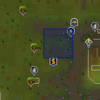 Shooting Star (Tree Gnome Stronghold) location