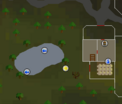 Fish Flingers - Lumbridge map