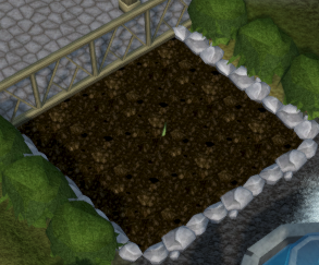 vine patch rs3