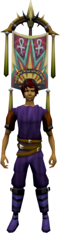 File:Tumeken Banner (Blessed) equipped.png