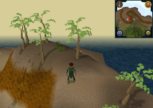File:Compass clue Karamja east of Pothole Dungeon entrance.png