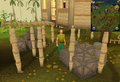Cryptic clue Tai Bwo Wannai crate.png