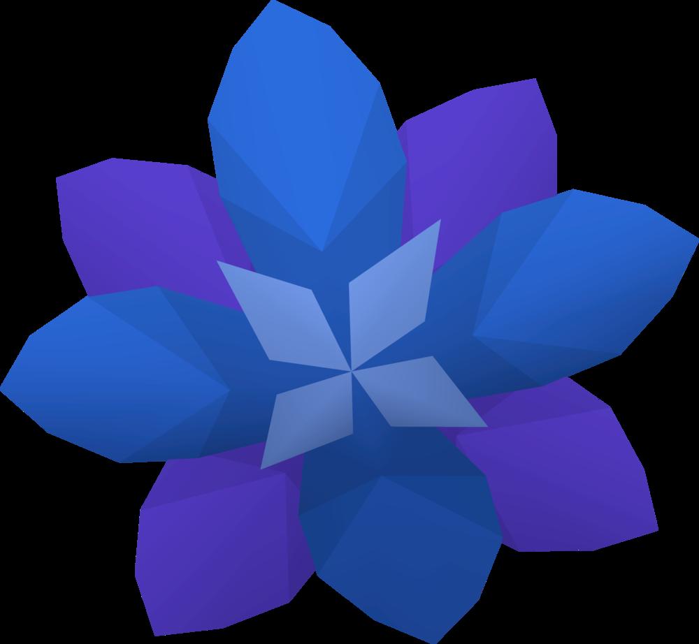 Delphinium flower detail