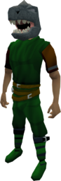 Helm of the Dagannoth equipped