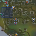 Nicoleta location.png