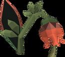 Roseblood (item)