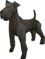 Terrier (black) pet.png
