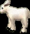 Li'l lamb detail