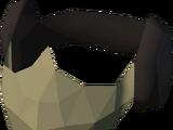 Masked earmuffs