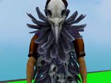 Ravensworn cape