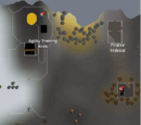 Wilderness Agility Course
