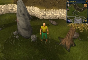 Map clue location Falador stones