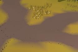 NXT Terrain blending On