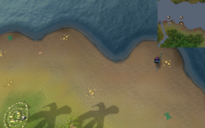 Compass clue Karamja east of fairy ring