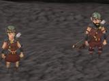 Gnome companion