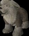 Sheepdog puppy (grey) pet.png