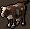 Chocolate cow