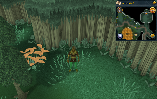 File:Scan clue Zanaris south-west of Chicken Shrine.png