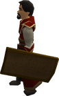Bronze sq shield equipped old