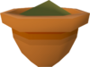 Pineapple seedling (w) detail