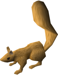Squirrel (light brown) pet