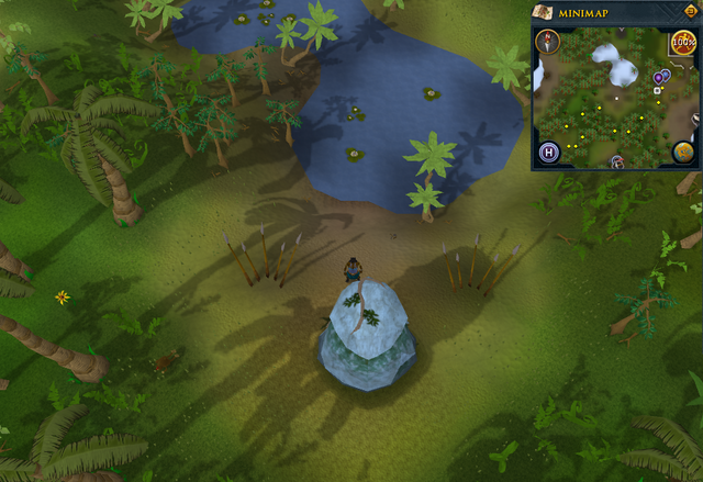 File:Compass clue Brimhaven north of Brimhaven Dungeon entrance.png