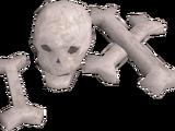 Bone brooch