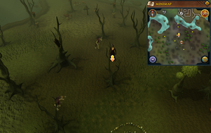 Scan clue Haunted Woods north-west of fairy ring