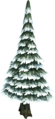 Evergreen tree (snow).png