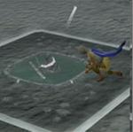 Harpooning pool