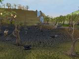 Coal truck mining site