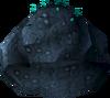 Fungal visor detail
