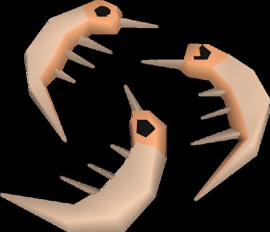File:Raw shrimps detail.png