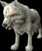 Lobo Hati