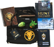 RuneFest 2017 goodie bag