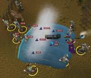 Tsunami area
