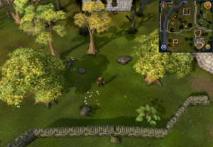 Compass clue Edgeville north-west of Cook's Guild