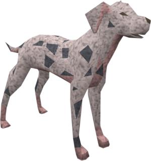 Dalmatian (blue) pet