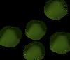 Irit seed detail