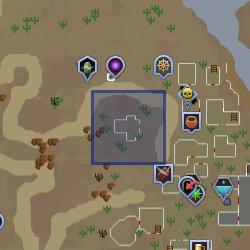 Ali, a bruxa mapa