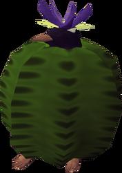 Penguin in cactus