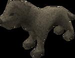 Labrador puppy (grey) pet