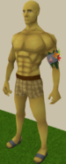 Armadyl yellow skin equipped