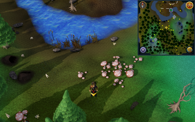 File:Scan clue Tirannwn clearing south of elf camp.png