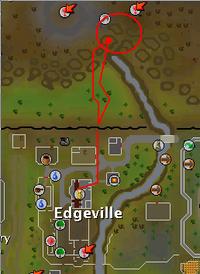 Zamorak wizard map