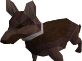 Guard dog (Dungeoneering)
