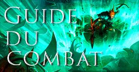 Guide du combat