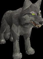 Lvl11 wolf