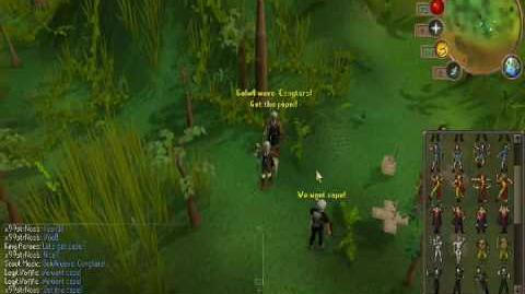 Runescape Kings 99 hunter