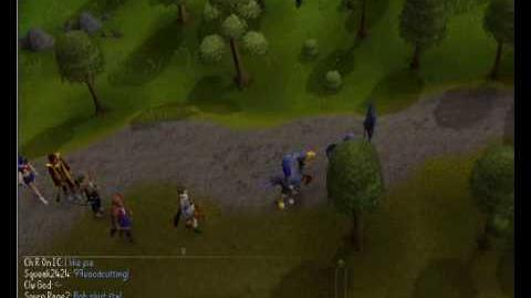 99 woodcutting Party